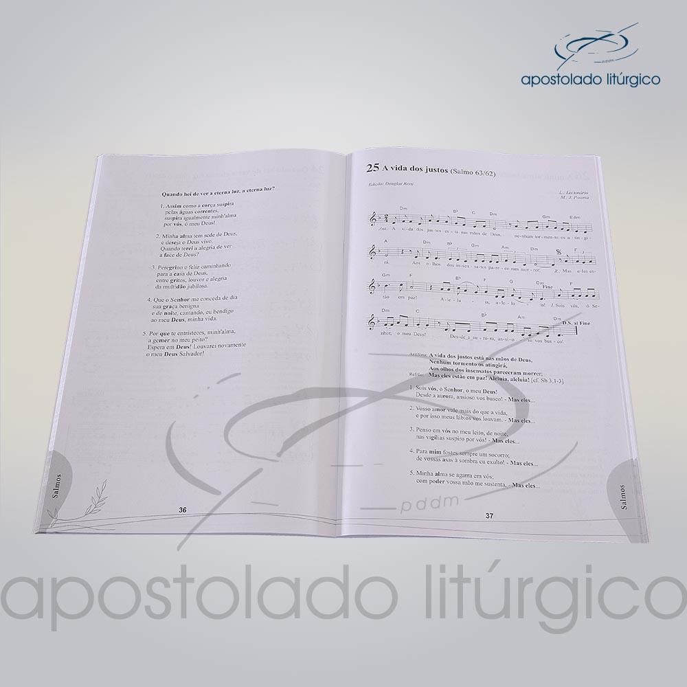 Livro Partitura Celebracao por Ocasiao da Morte INTERNO COD 05048 0000 | Apostolado Litúrgico Brasil