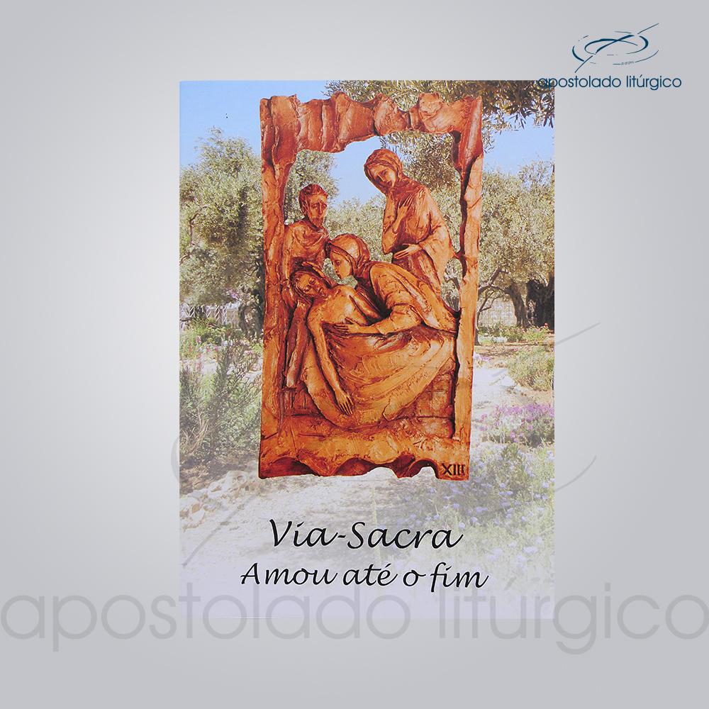 Livro da Via Sacra da Angelica | Apostolado Litúrgico Brasil